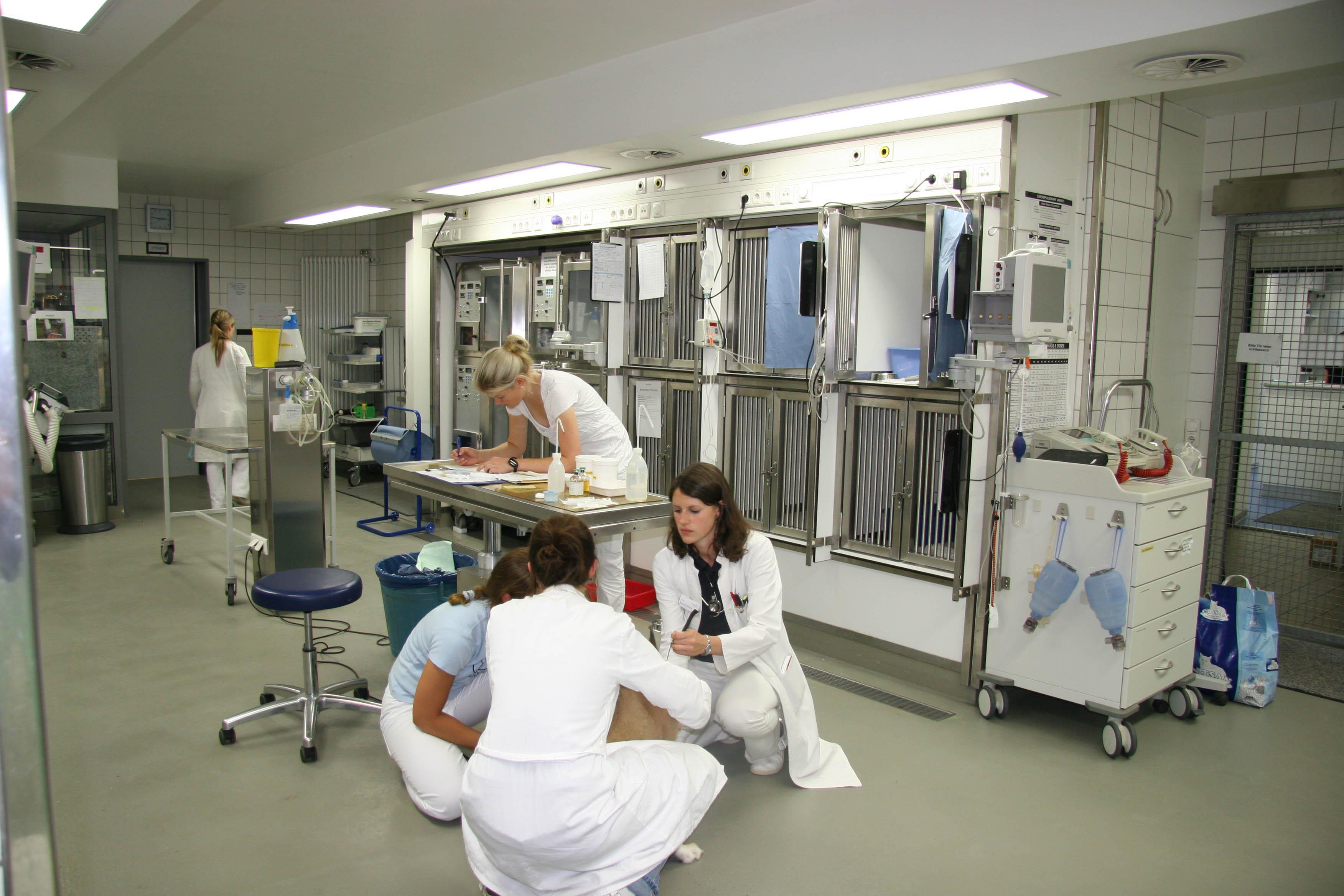 Universität München Medizin